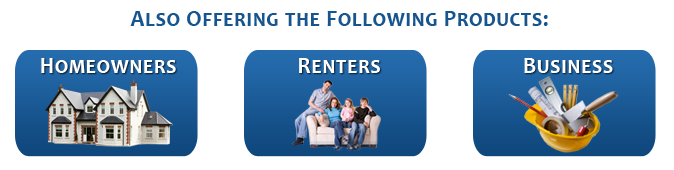 Also offering home, renters and business insurance in Roswell, GA